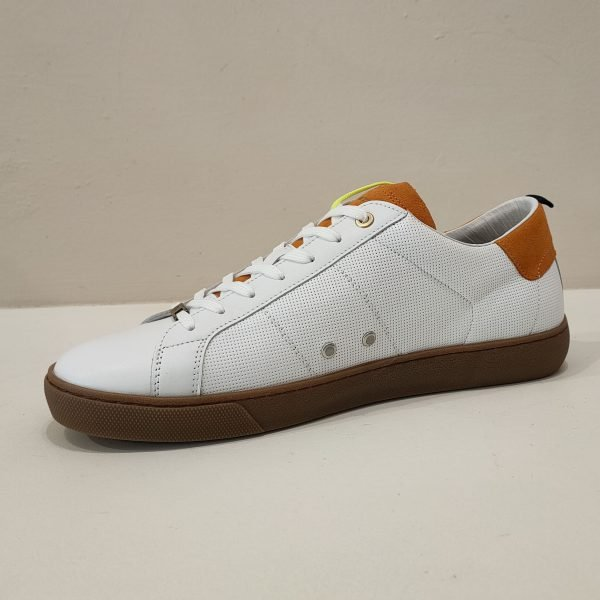 sneakers - ambitious -2021 -ilcalzolaioshop -